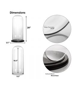 """Glass Dome Cloche with Wood Base Matte Black H-21"""""""