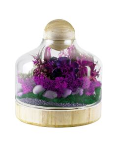 TERRARIUM VASE WITH WOOD BASE AND STOPPER