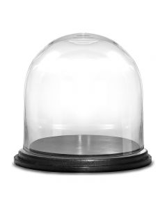glass-dome-terrarium-with-wood-base-gdo106wb